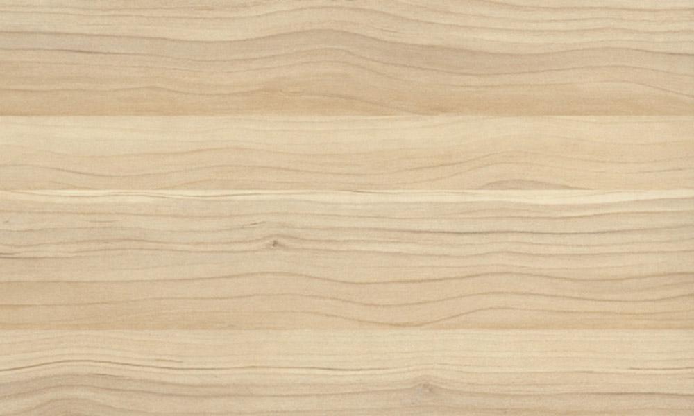 Ash-tree-texture
