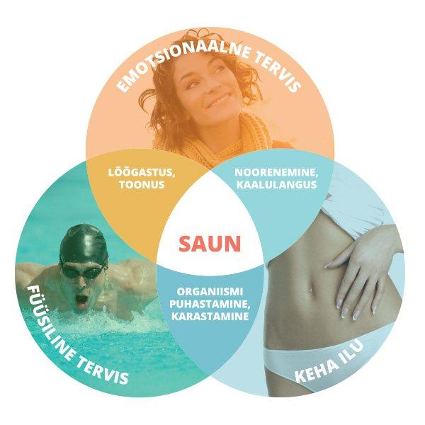 sauna-scheme-est.jpg